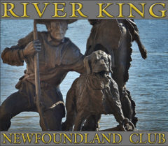 River King Newfoundland Club